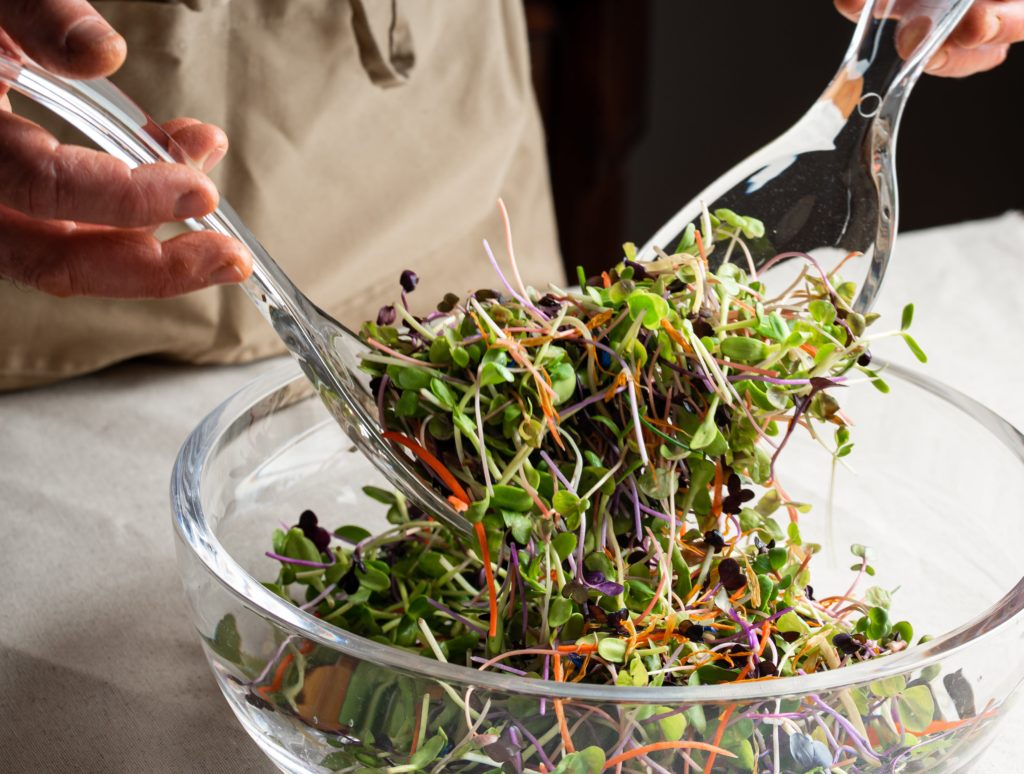 Salade micro-pousses mix